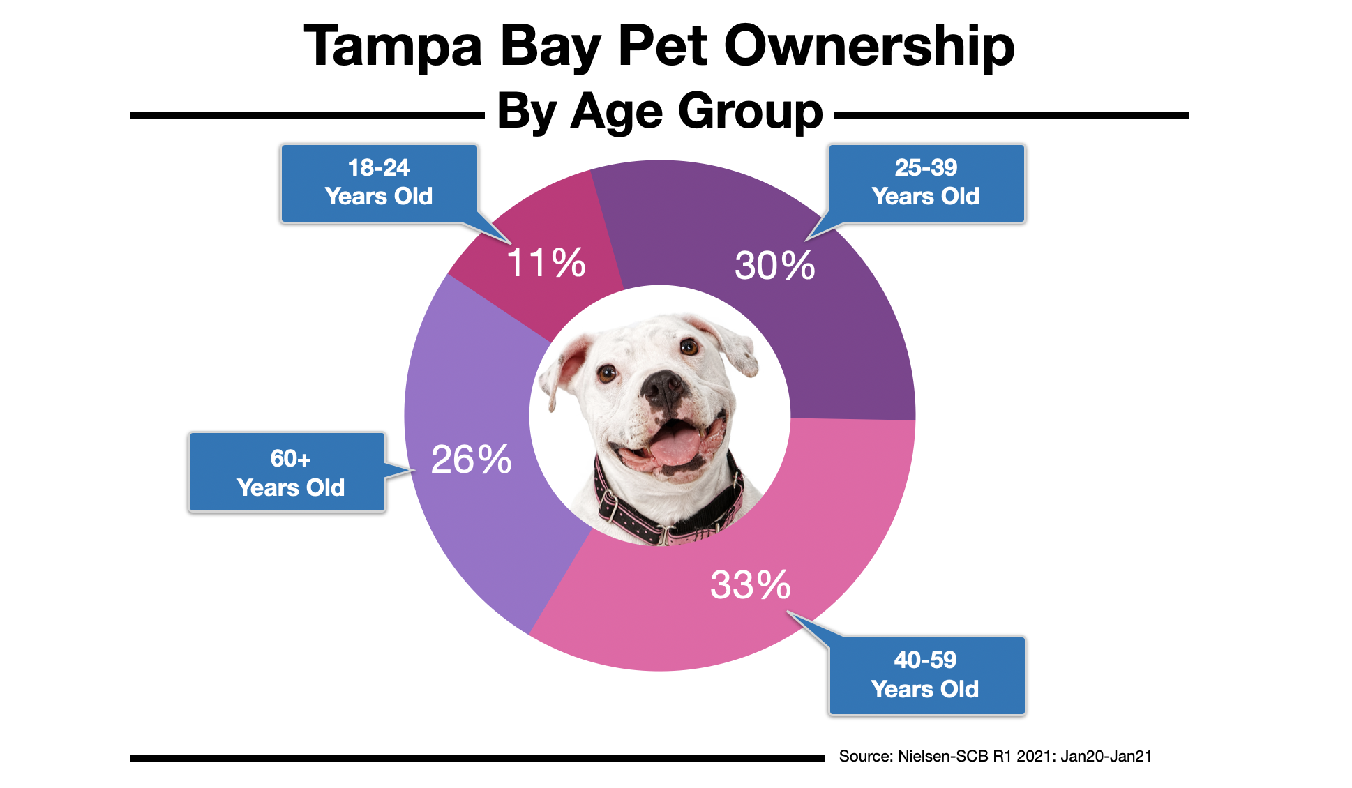Advertising To Pet Owners In Tampa Bay